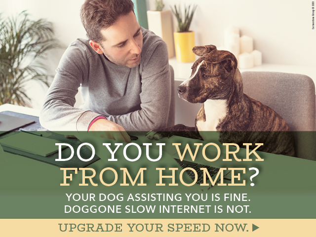 Do you work from home?